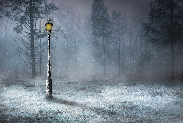 zasněžená lampa